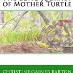 The Long Journey of Mother Turtle
